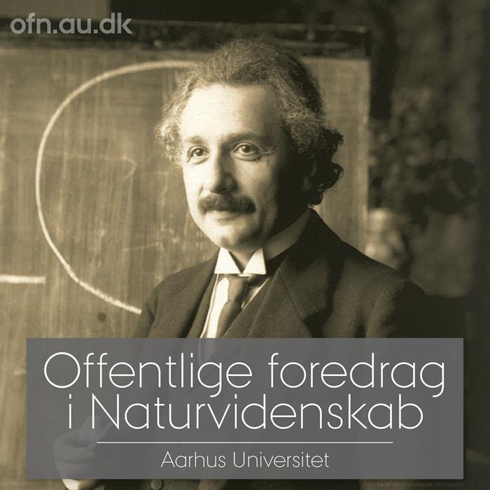 Einstein portræt